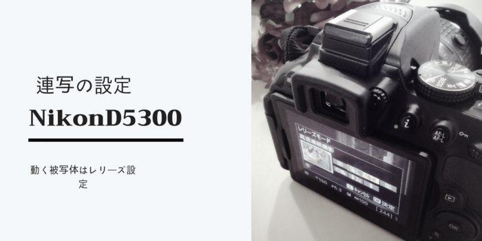 NikonD5300で連写の設定/動く被写体を撮る