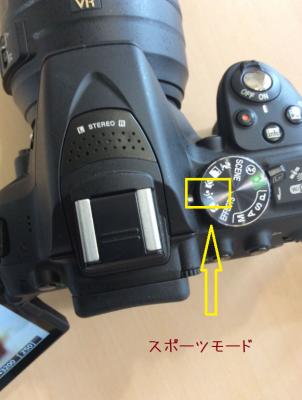 連写 NikonD5300
