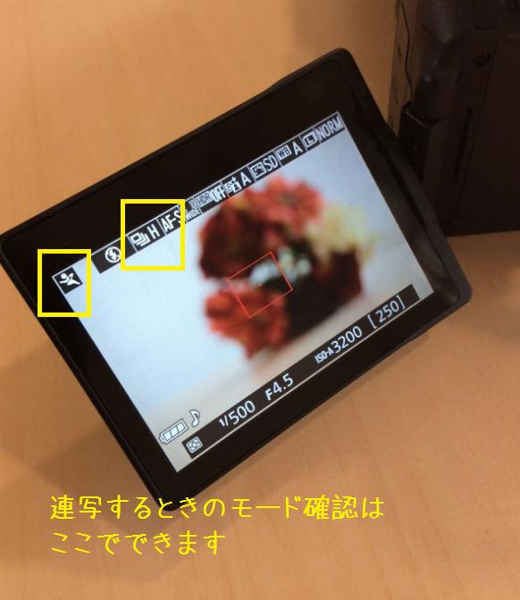 NikonD5300 連写