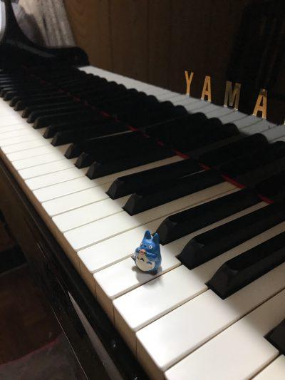 ピアニスト大竹道哉氏に習う