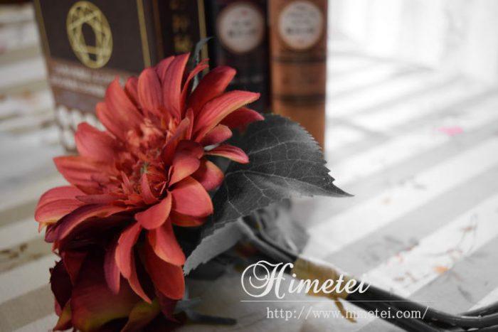 NikonD5300セレクトカラーの設定で雰囲気のある写真を撮る
