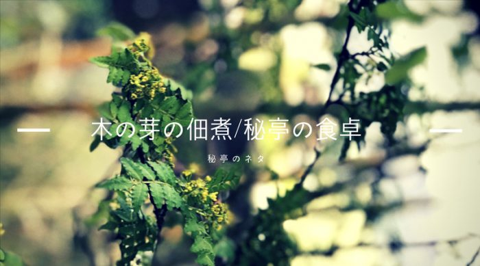 木の芽の佃煮/秘亭の食卓