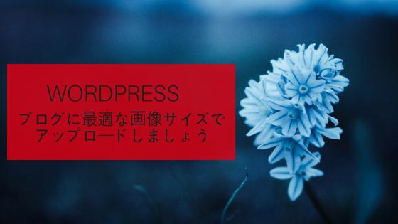 ブログに最適な画像サイズでアップロードしましょう/WordPress
